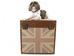 Essex Dog Groomers History